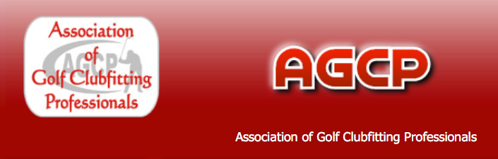 12th AGCP Roundtable